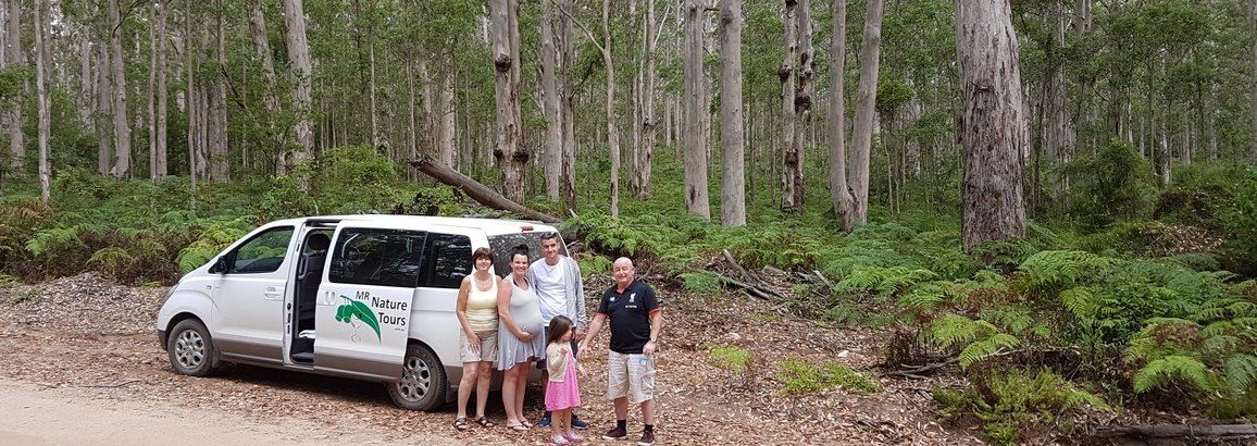 On the Margaret River Wine & Nature Tour in the Boranup Karri Forest